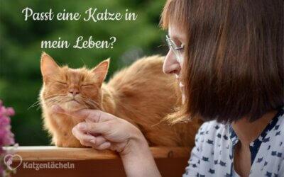 Ich möchte sooooo gern eine Katze, Mama!