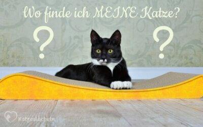 Wo finde ich MEINE Katze?